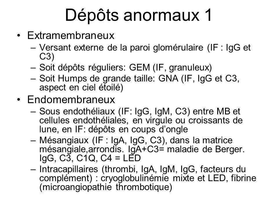Dépôts anormaux 1 Extramembraneux Endomembraneux