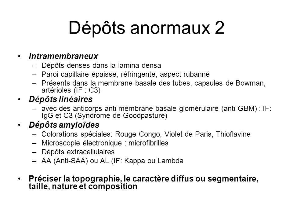 Dépôts anormaux 2 Intramembraneux Dépôts linéaires Dépôts amyloïdes