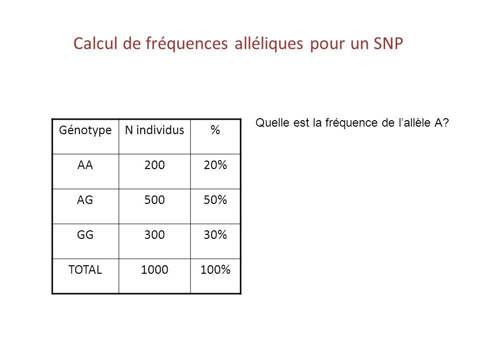 Calcul de fréquences alléliques pour un SNP