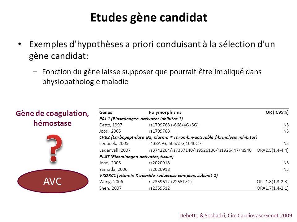Etudes gène candidat AVC