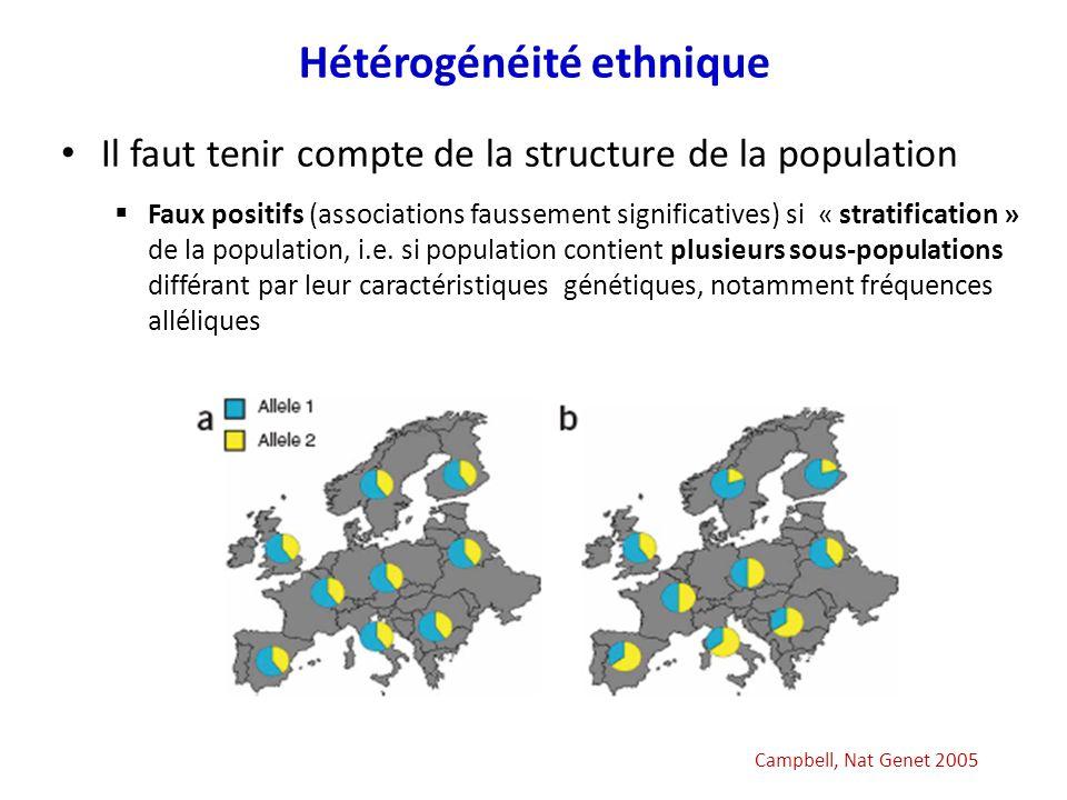Hétérogénéité ethnique