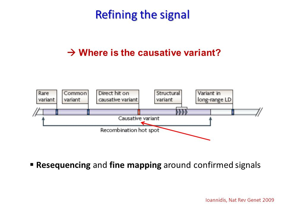 Refining the signal  Where is the causative variant