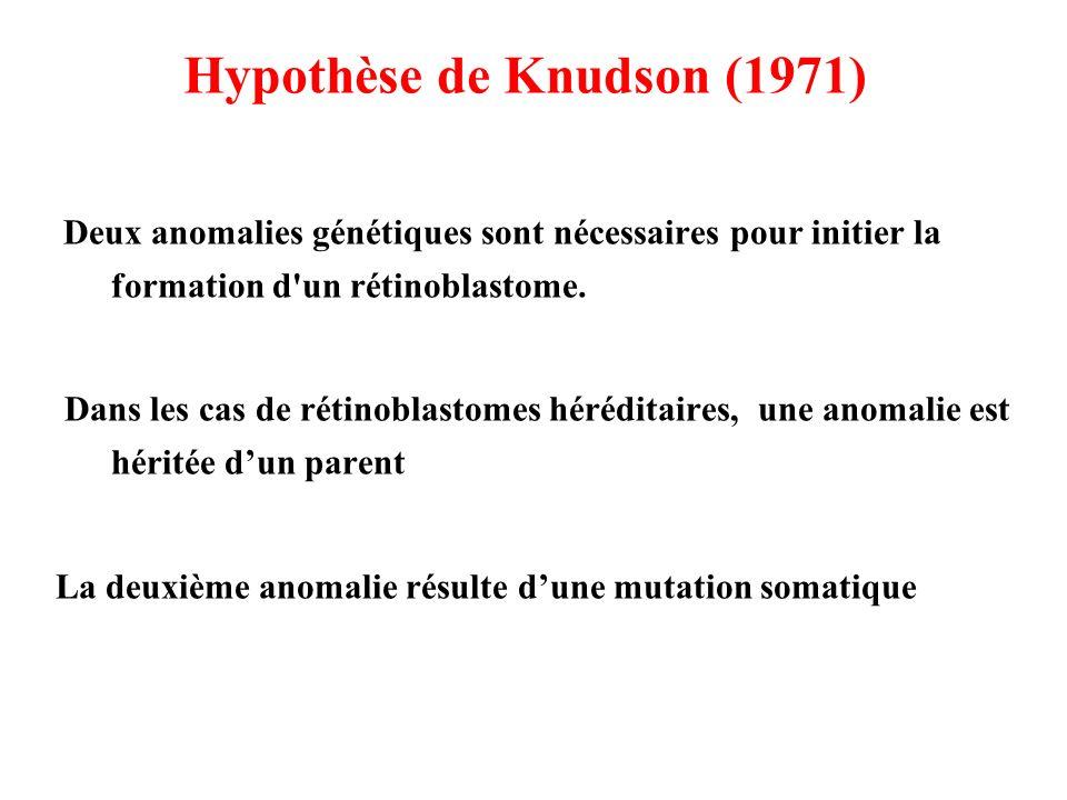 Hypothèse de Knudson (1971)