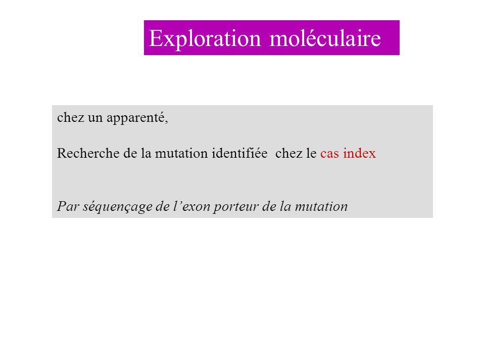 Exploration moléculaire