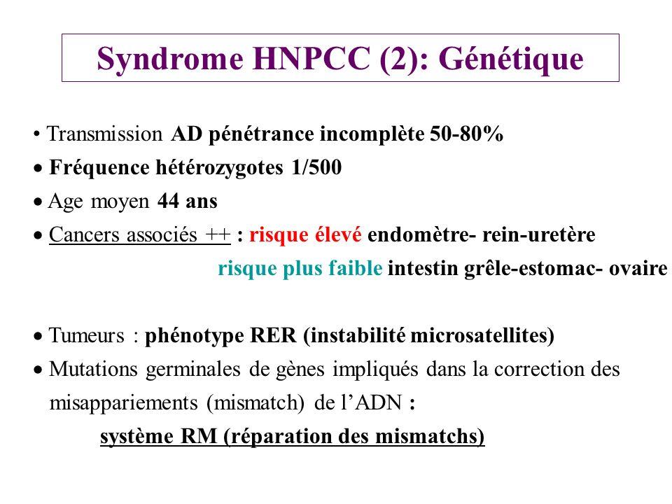 Syndrome HNPCC (2): Génétique