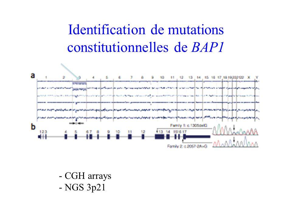 Identification de mutations constitutionnelles de BAP1