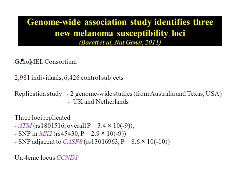 Genome-wide association study identifies three new melanoma susceptibility loci (Barett et al, Nat Genet, 2011)