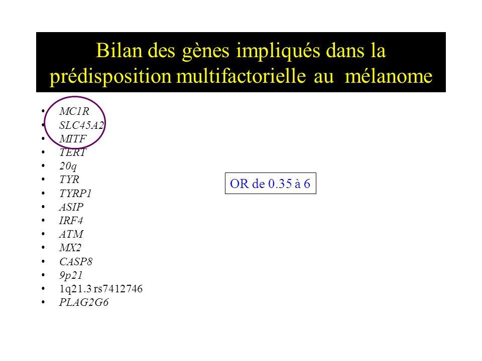 Bilan des gènes impliqués dans la prédisposition multifactorielle au mélanome