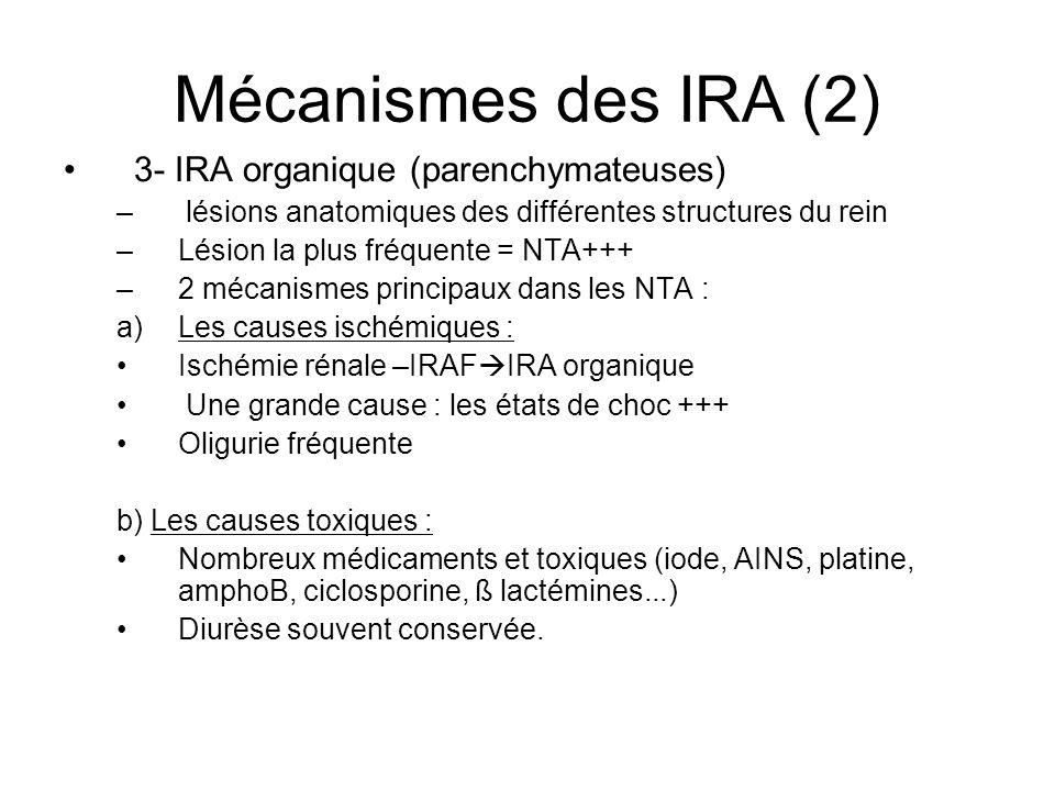 Mécanismes des IRA (2) 3- IRA organique (parenchymateuses)