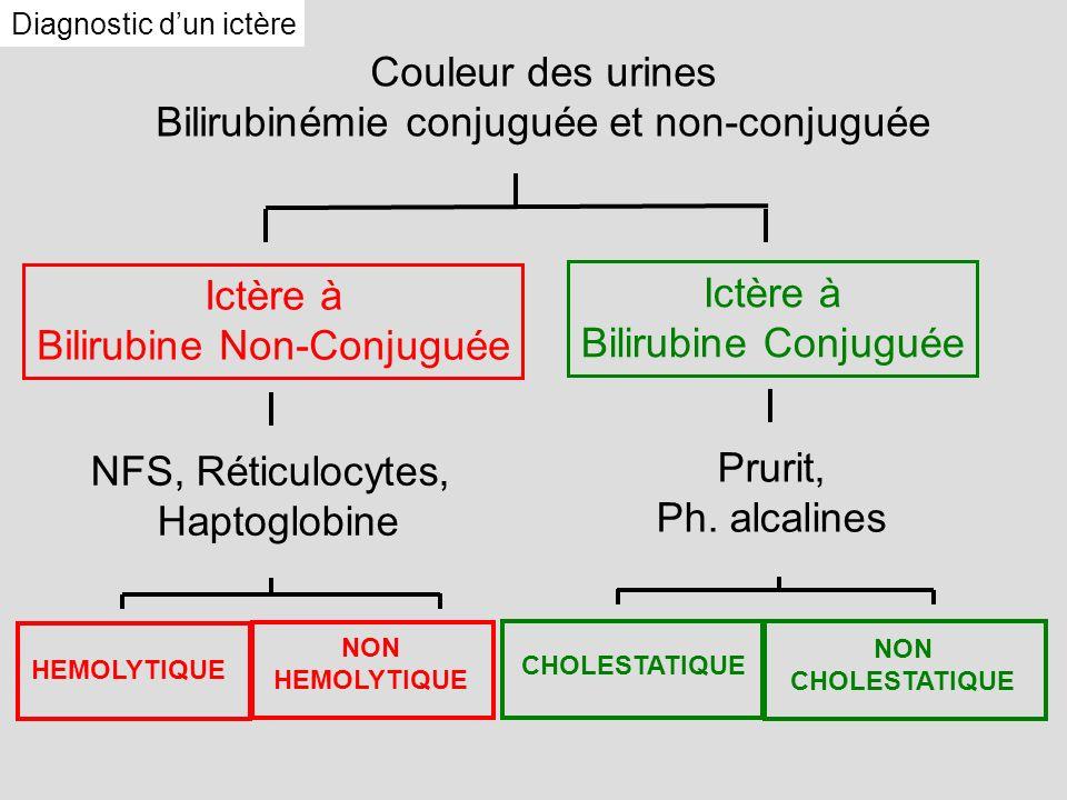 Bilirubinémie conjuguée et non-conjuguée