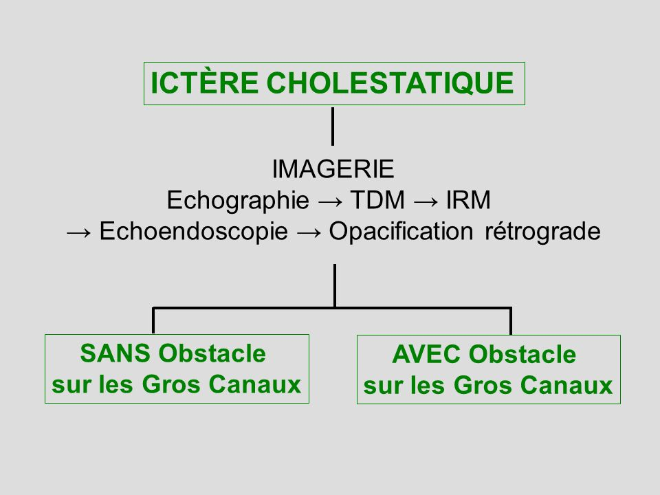 → Echoendoscopie → Opacification rétrograde