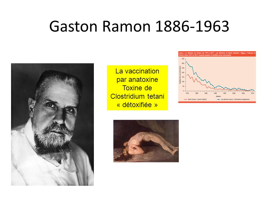 Gaston Ramon 1886-1963 La vaccination par anatoxine