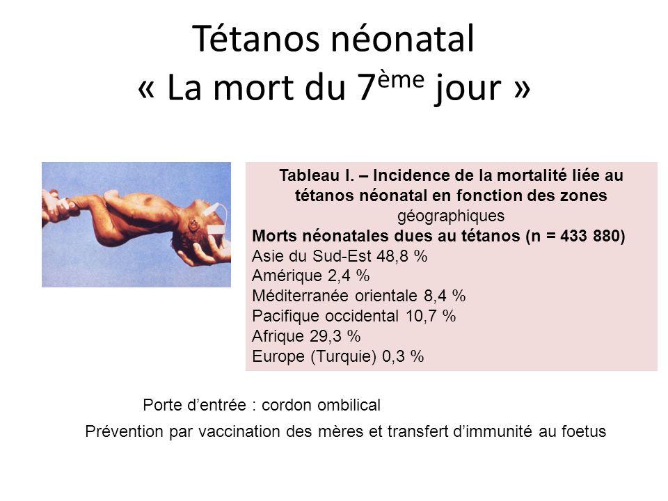 Tétanos néonatal « La mort du 7ème jour »