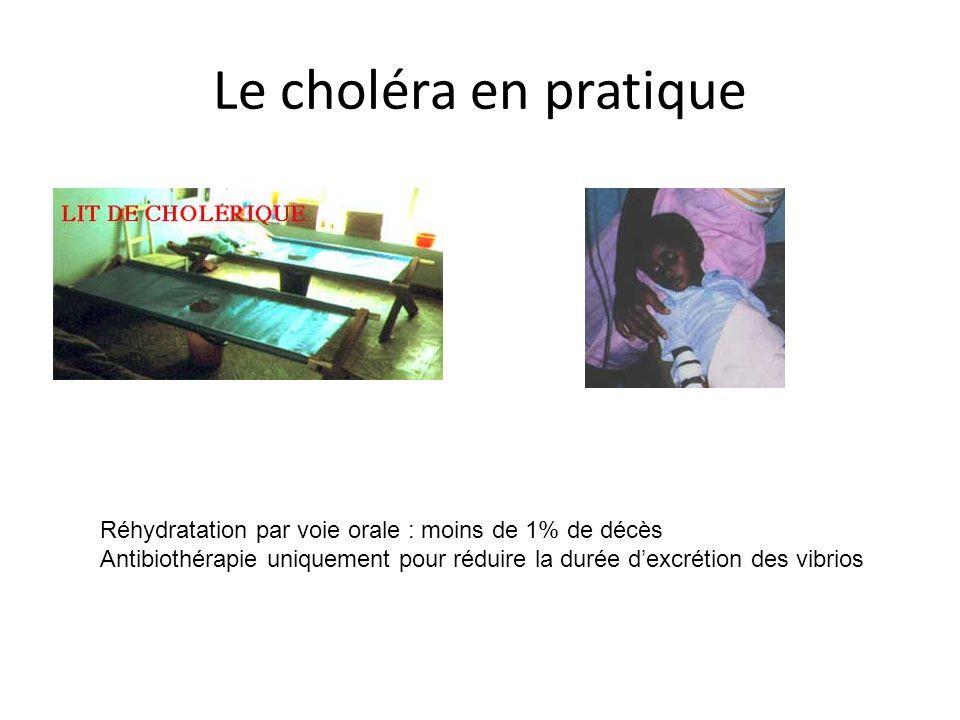 Le choléra en pratique Réhydratation par voie orale : moins de 1% de décès.