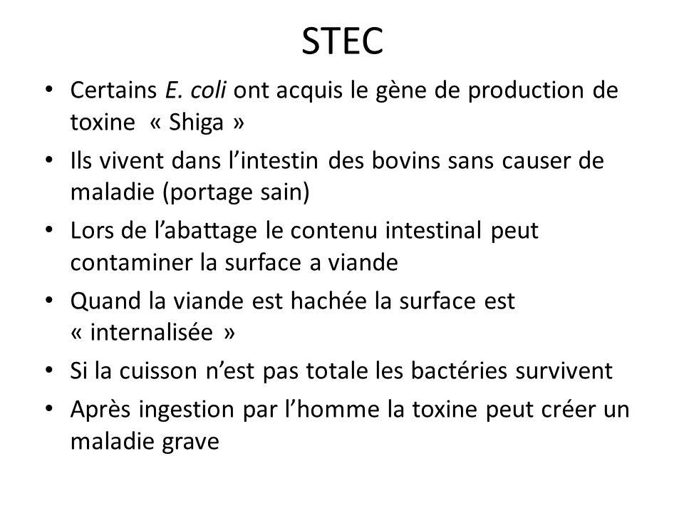 STEC Certains E. coli ont acquis le gène de production de toxine « Shiga »