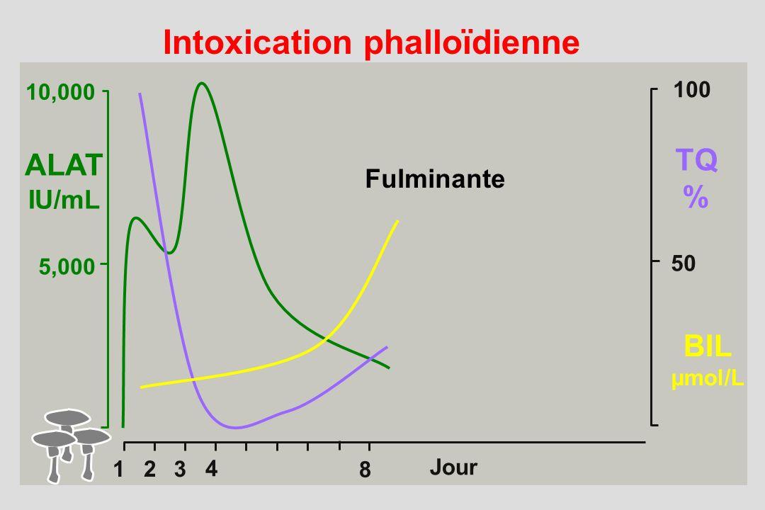 Intoxication phalloïdienne