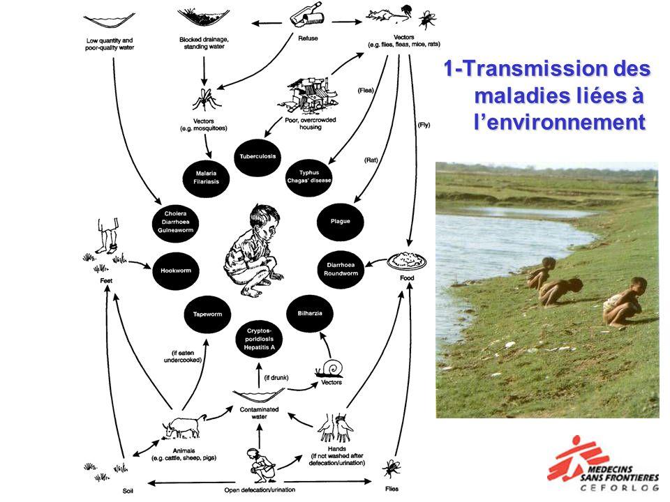 1-Transmission des maladies liées à l'environnement