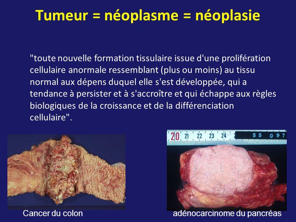 Tumeur = néoplasme = néoplasie
