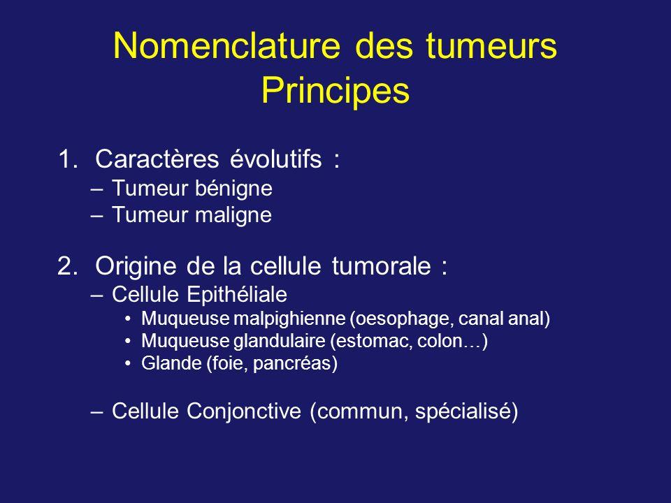 Nomenclature des tumeurs Principes