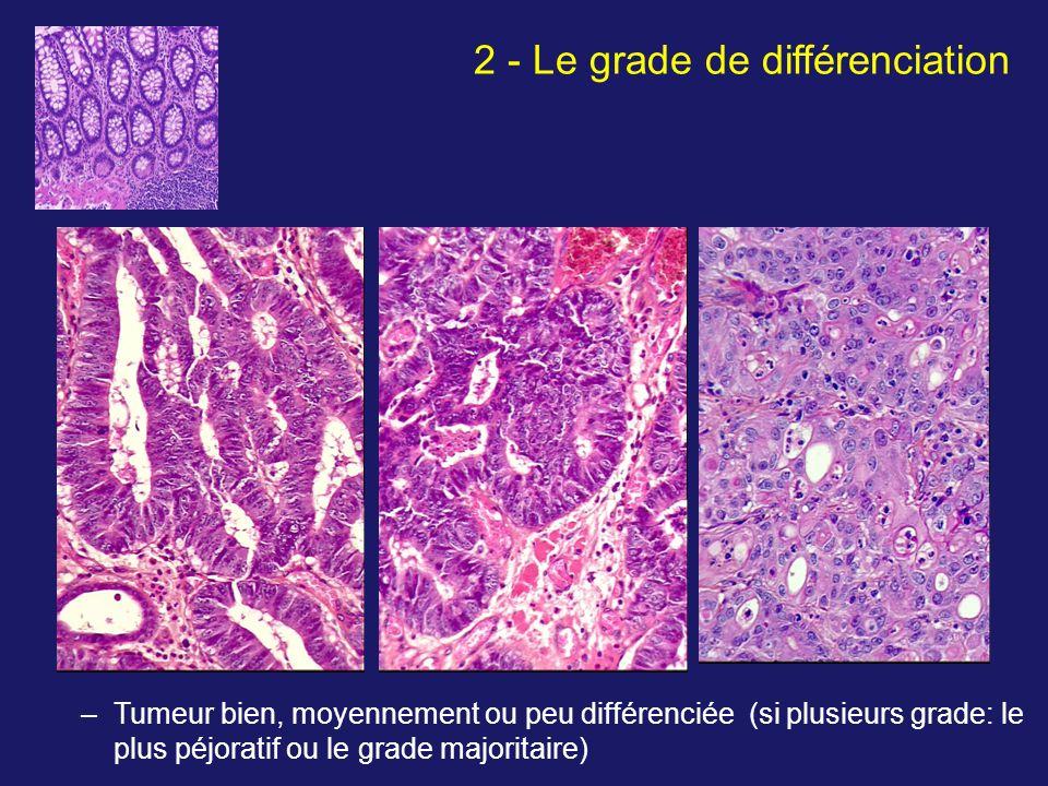2 - Le grade de différenciation