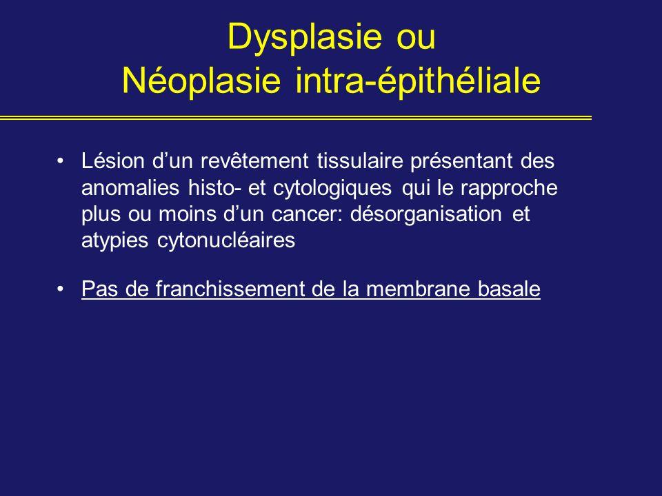 Dysplasie ou Néoplasie intra-épithéliale