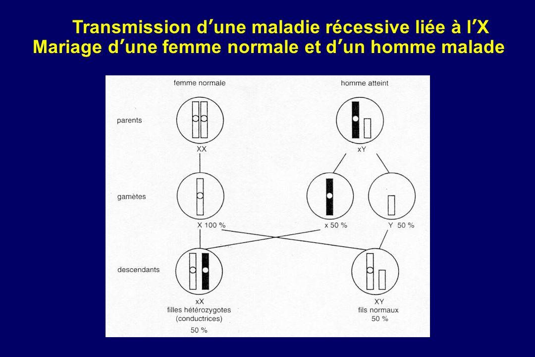 Transmission d'une maladie récessive liée à l'X