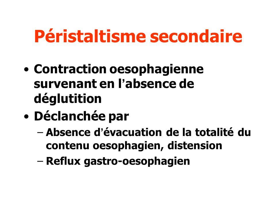 Péristaltisme secondaire