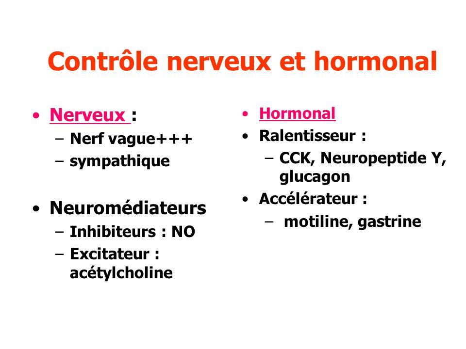 Contrôle nerveux et hormonal