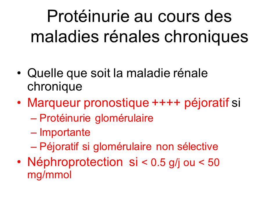 Protéinurie au cours des maladies rénales chroniques