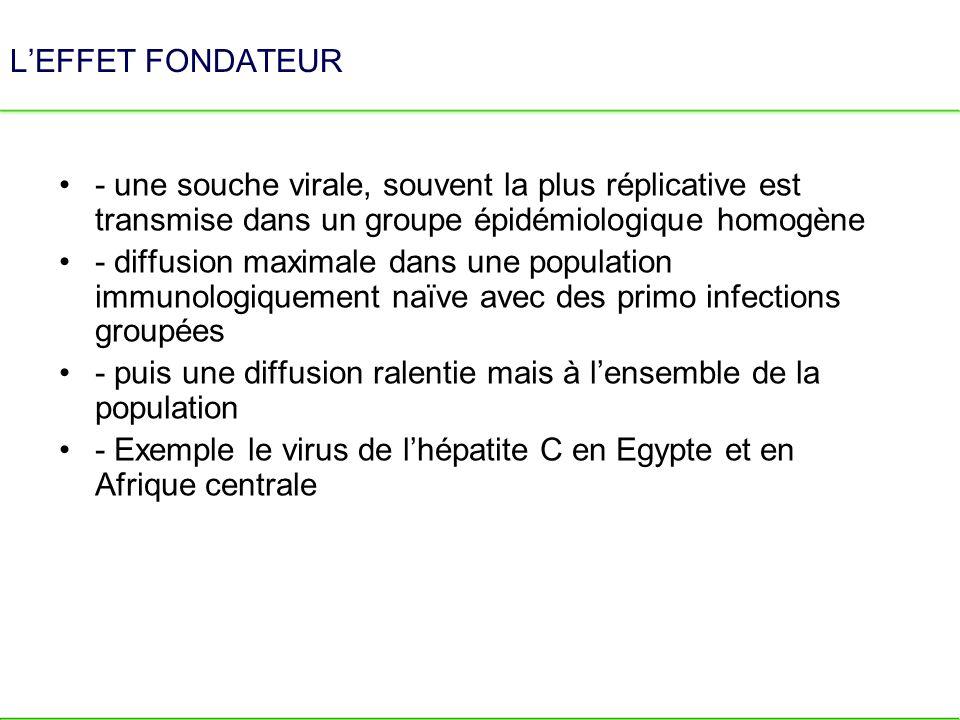L'EFFET FONDATEUR - une souche virale, souvent la plus réplicative est transmise dans un groupe épidémiologique homogène.