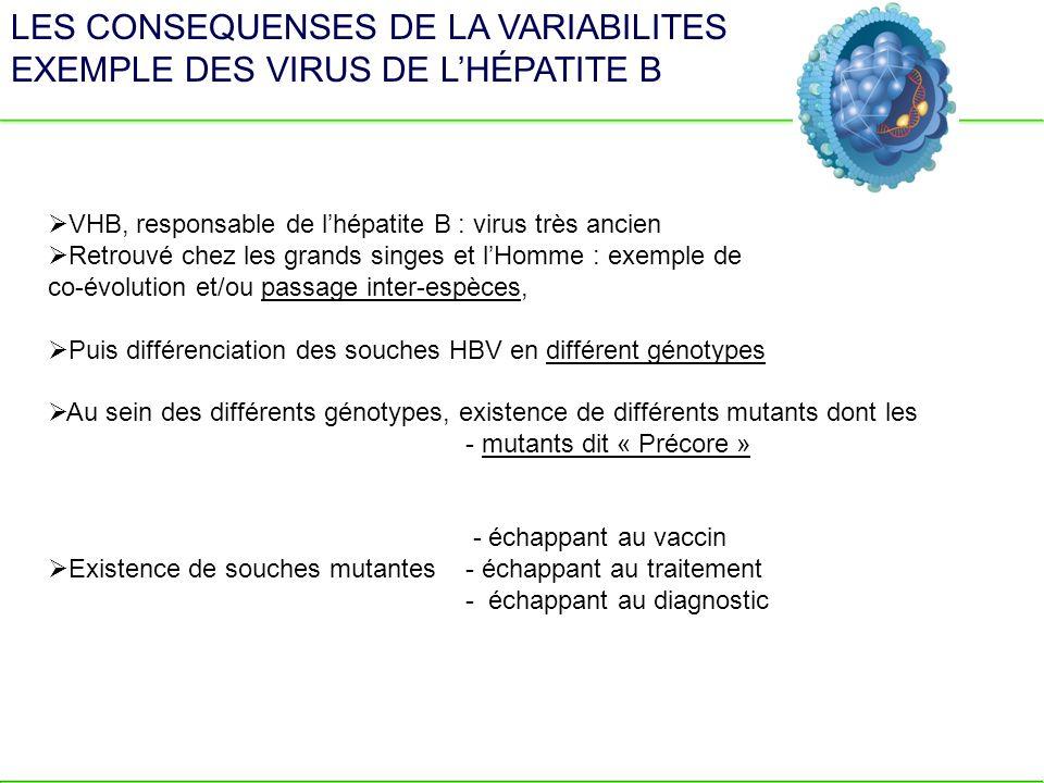 LES CONSEQUENSES DE LA VARIABILITES EXEMPLE DES VIRUS DE L'HÉPATITE B