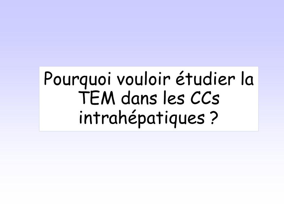 Pourquoi vouloir étudier la TEM dans les CCs intrahépatiques