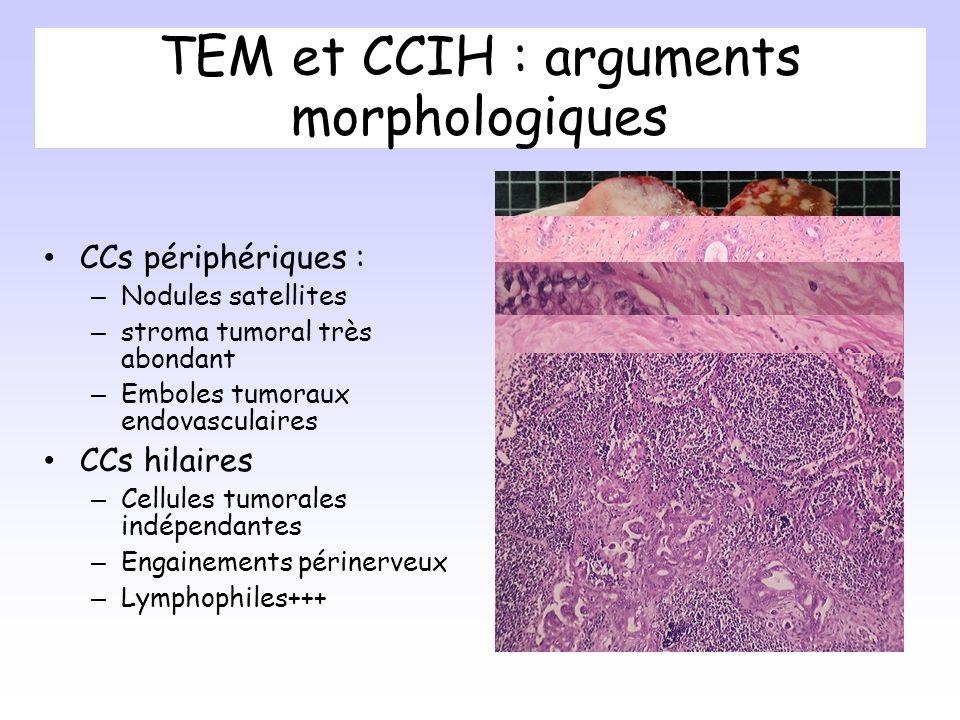 TEM et CCIH : arguments morphologiques