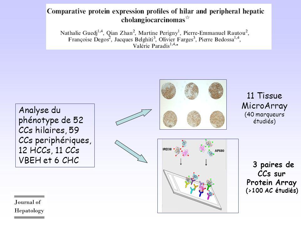 3 paires de CCs sur Protein Array