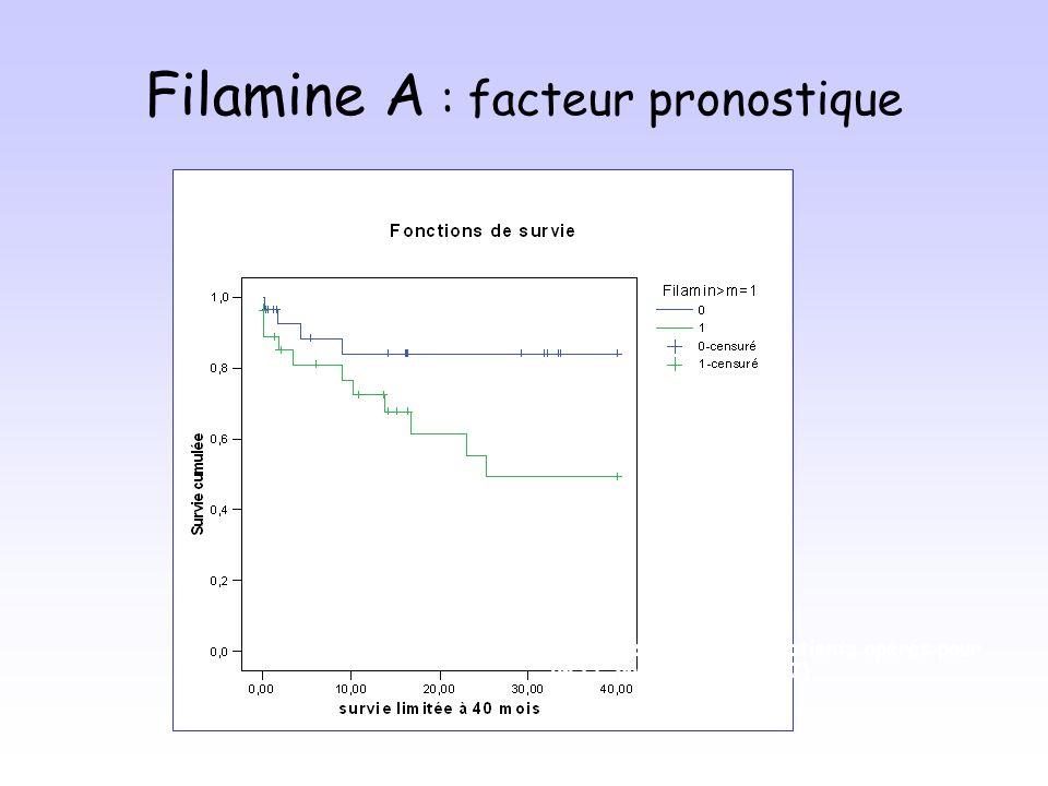 Filamine A : facteur pronostique