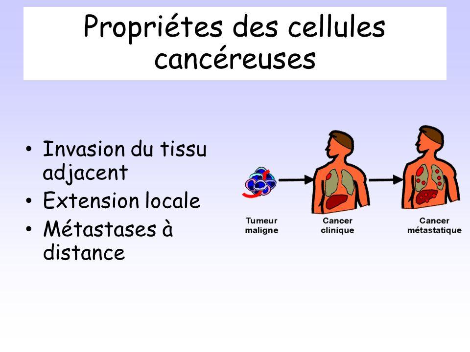 Propriétes des cellules cancéreuses