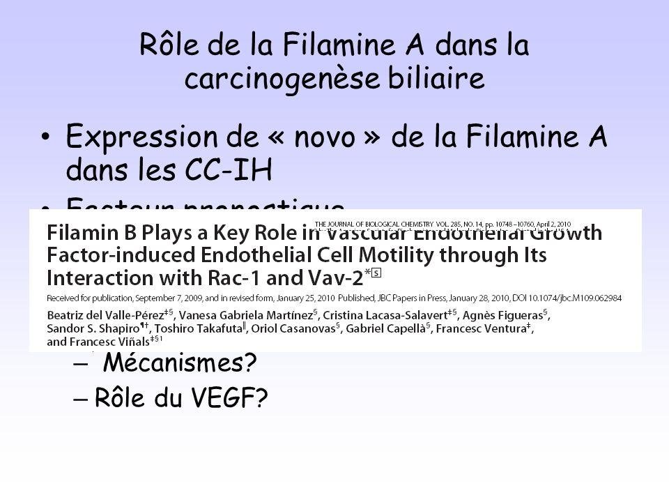 Rôle de la Filamine A dans la carcinogenèse biliaire
