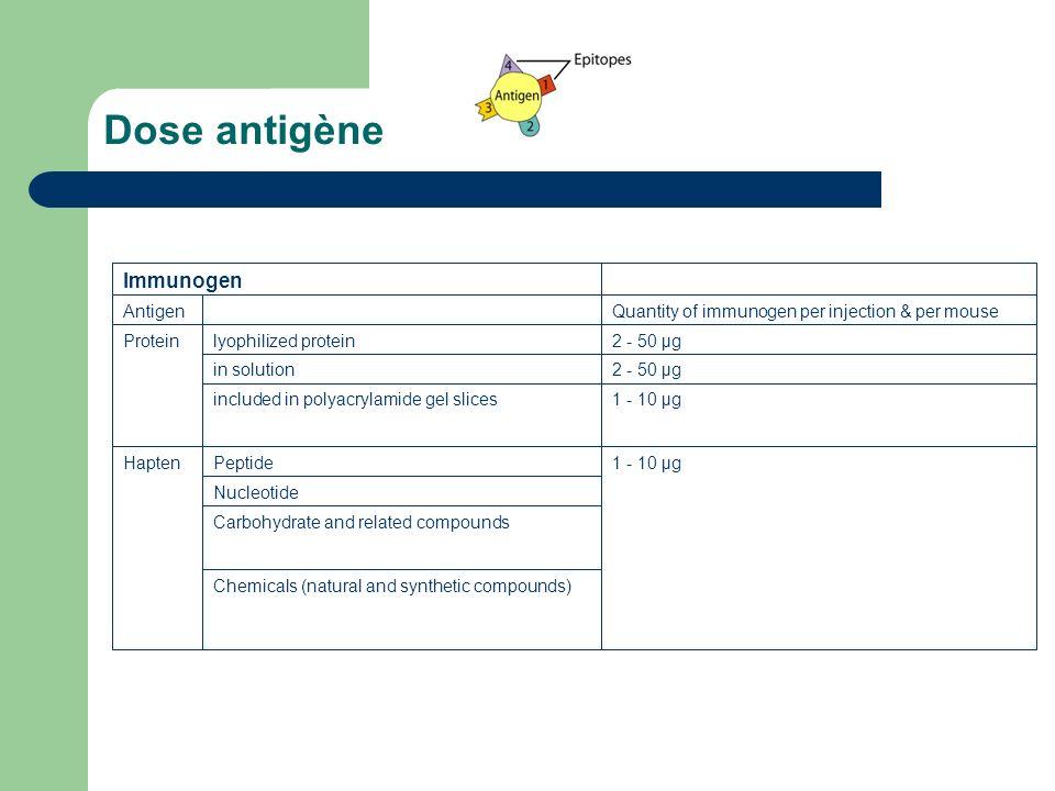 Dose antigène Immunogen Antigen