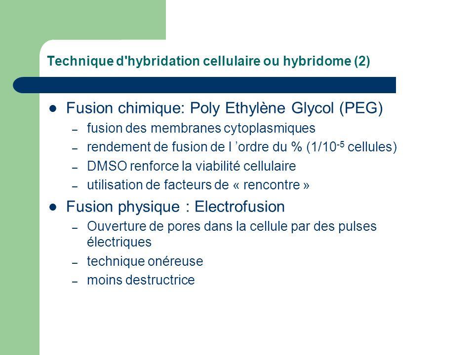 Technique d hybridation cellulaire ou hybridome (2)