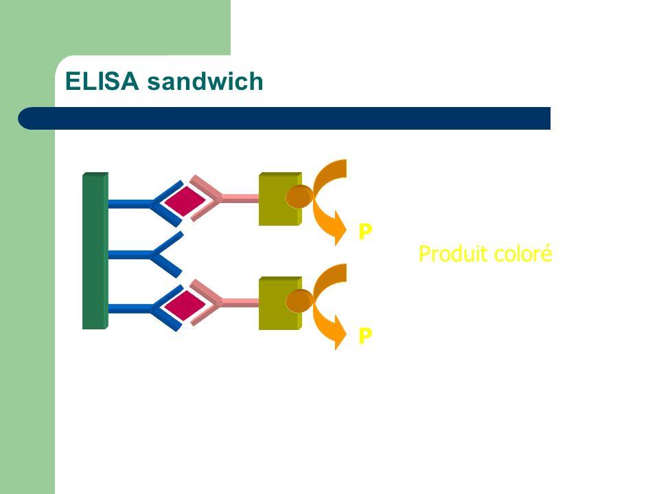 ELISA sandwich S P Produit coloré S P