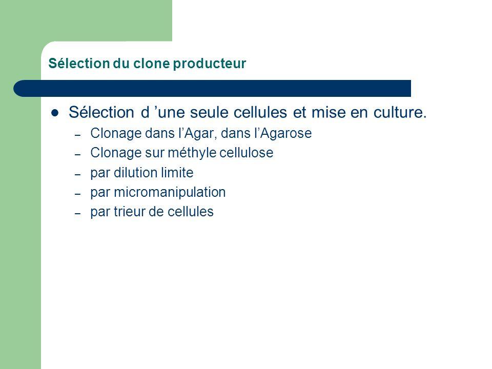 Sélection du clone producteur