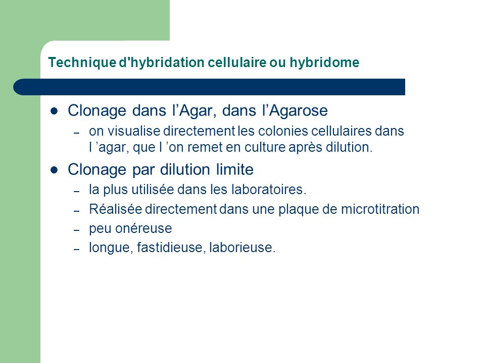 Technique d hybridation cellulaire ou hybridome