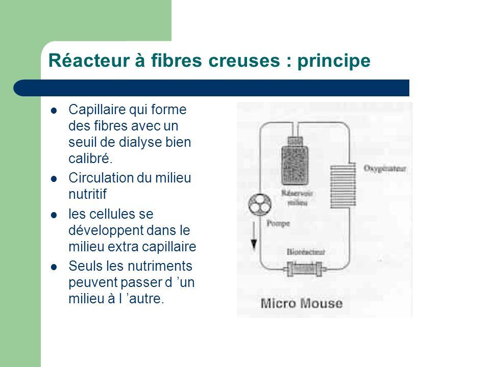 Réacteur à fibres creuses : principe