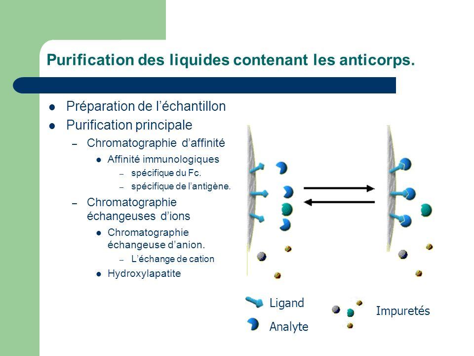 Purification des liquides contenant les anticorps.