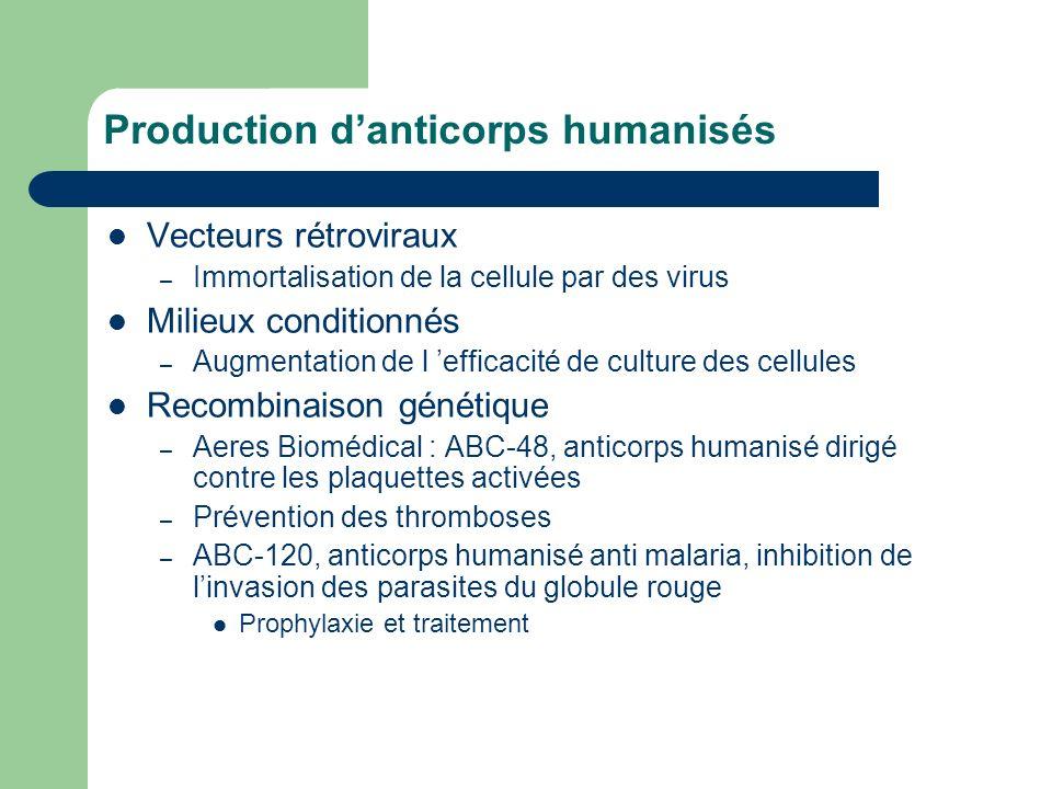 Production d'anticorps humanisés