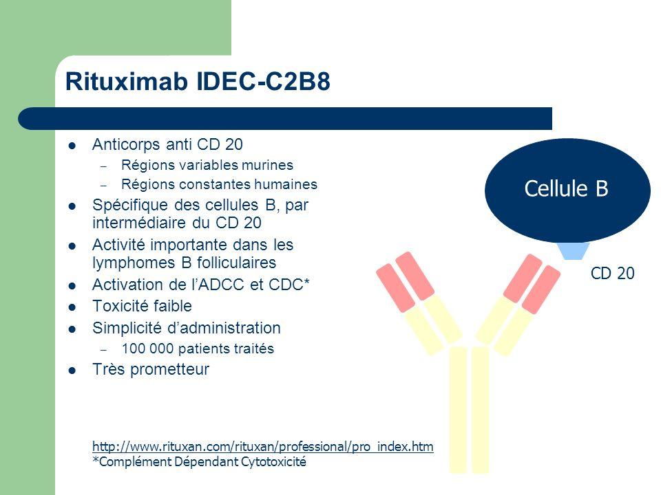 Rituximab IDEC-C2B8 Cellule B Anticorps anti CD 20