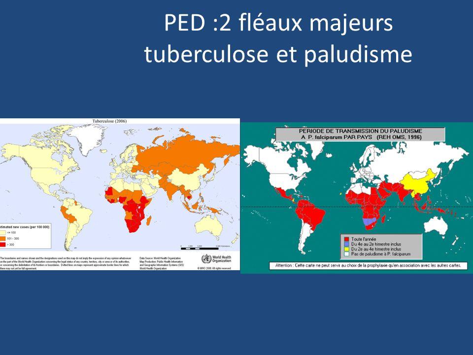 PED :2 fléaux majeurs tuberculose et paludisme