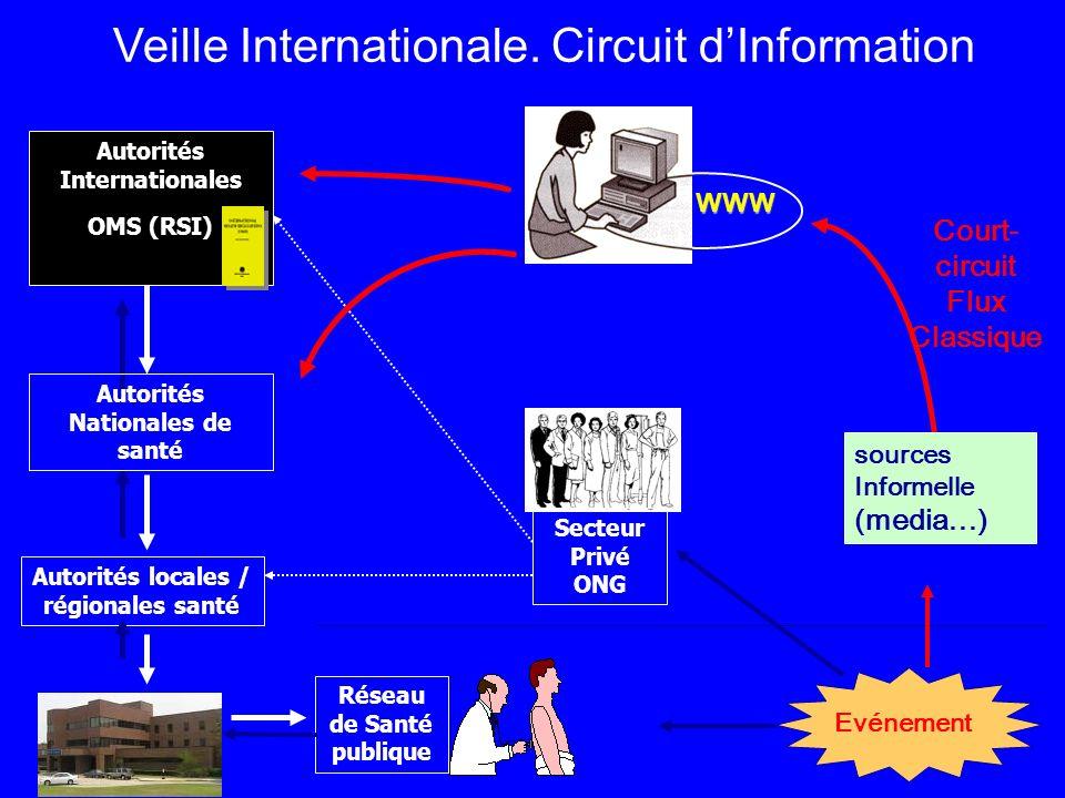 Veille Internationale. Circuit d'Information