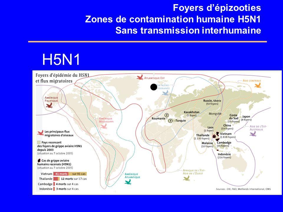 H5N1 Foyers d'épizooties Zones de contamination humaine H5N1
