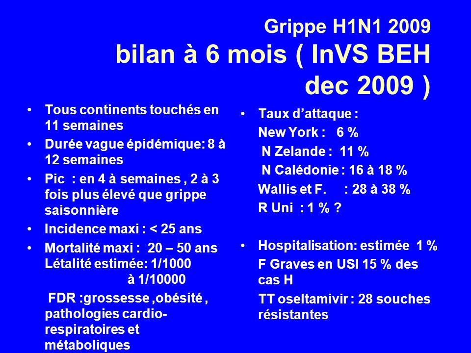Grippe H1N1 2009 bilan à 6 mois ( InVS BEH dec 2009 )